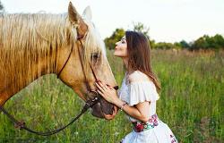 🐶 Los animales y su evolución espiritual 🐬