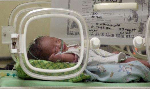 Proses Bayi Tabung yang Memungkinkan Adanya Anak Kembar