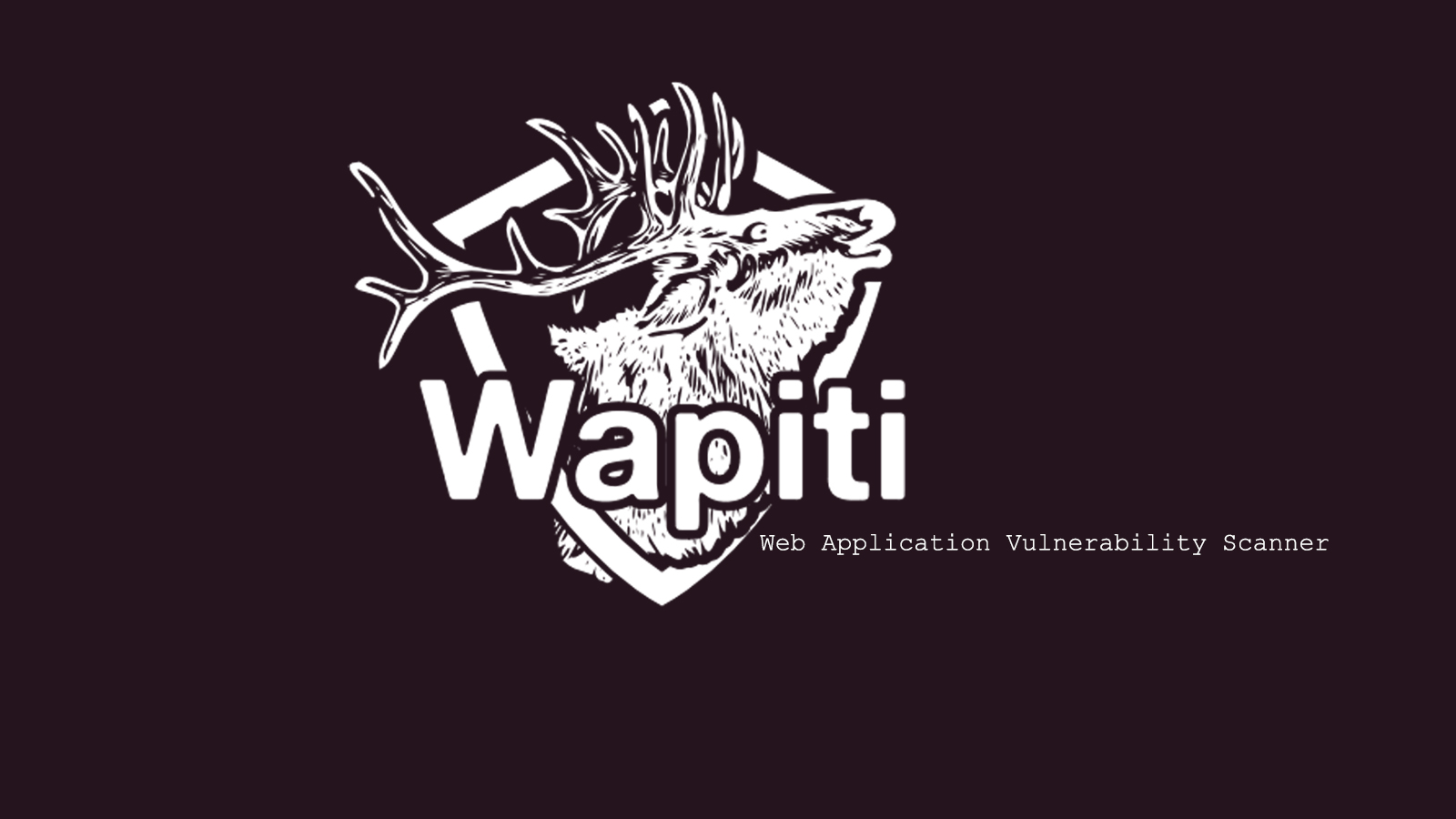 Wapiti Security Tool