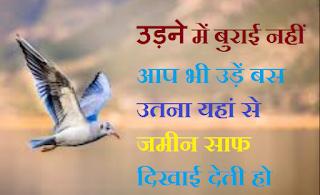 Birds Status in Hindi