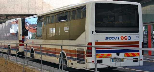 COVID19. Scotturb reforça autocarros em Cascais na hora de ponta