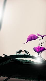 Ant 2 Love Mobile HD Wallpaper