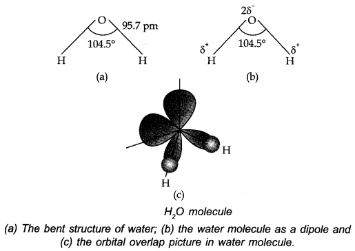 water structure