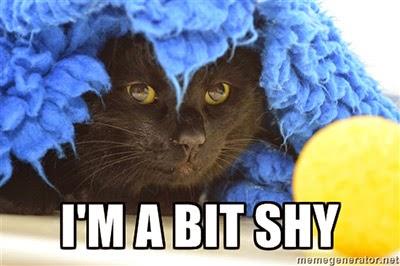 I'm a bit shy