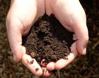 benefits of dirt