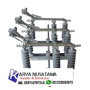 Jual Disconeting Switch Herg Gw9 24 V Polymer 630a 20KV di Denpasar