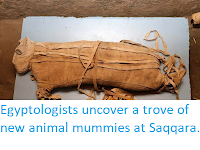 https://sciencythoughts.blogspot.com/2019/11/eygyptologists-uncover-trove-of-new.html