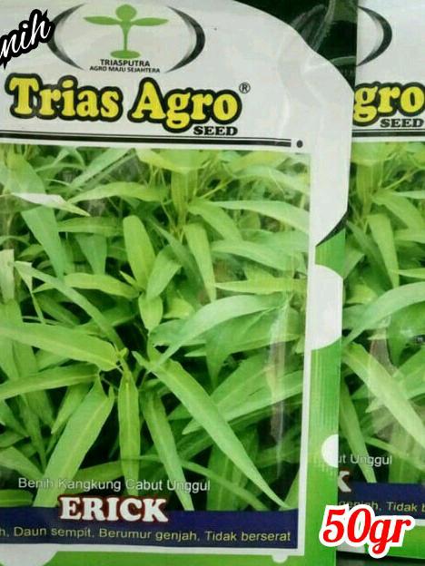 Benih Kangkung Unggul ERICK Produk Trias Agro Seed