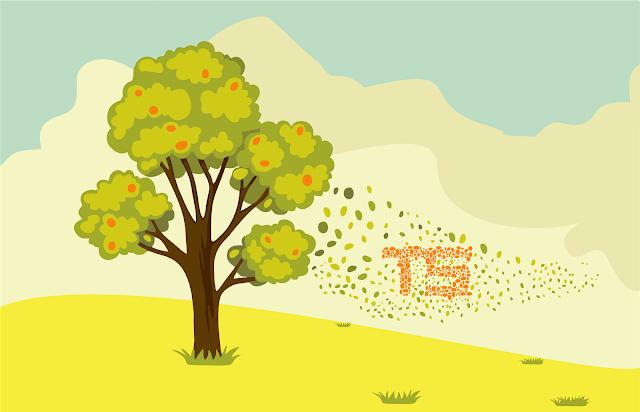 Warna Analog pada Desain Grafis
