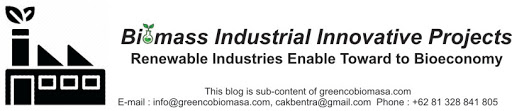 Biomass Industrial Innovative Projects
