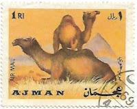Selo Camelo Árabe