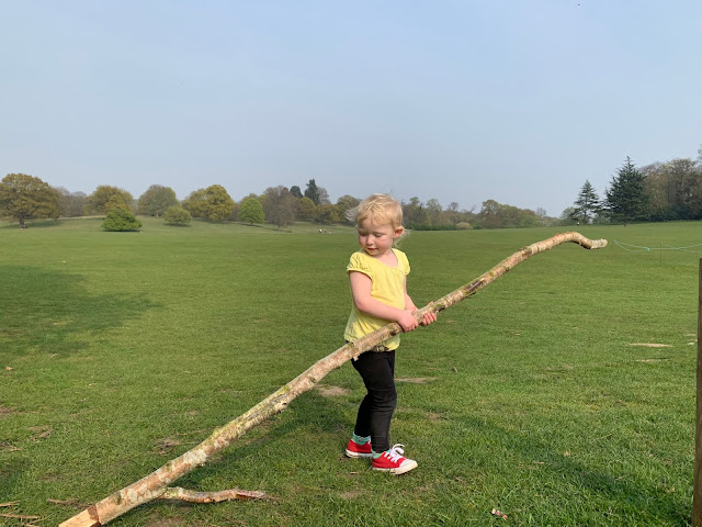 A toddler carrying a very big stick with Weald Country Park in the background