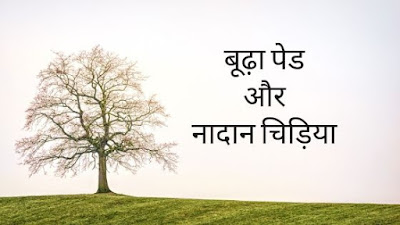 कमज़ोर जड़े  bird and old tree Best motivational story in hindi