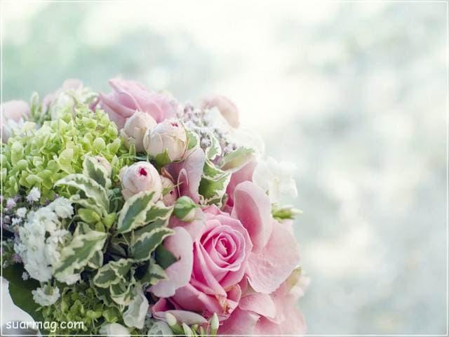 صور بوكيه ورد 7 | Flowers Bouquet photos 7