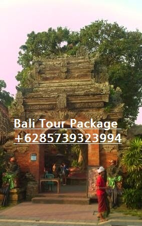 Bali Tour Package +6285739323994