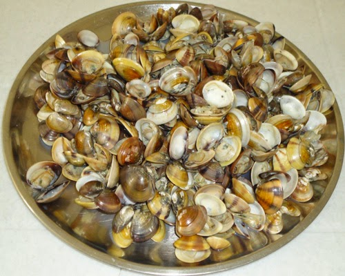 boiled clams