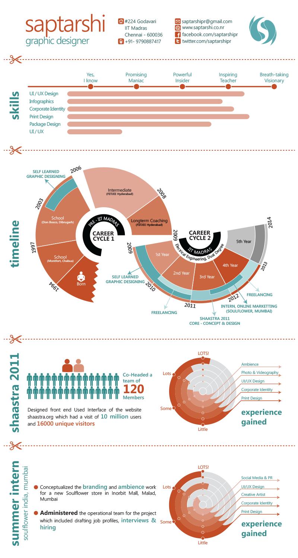 Best Infographic Resume