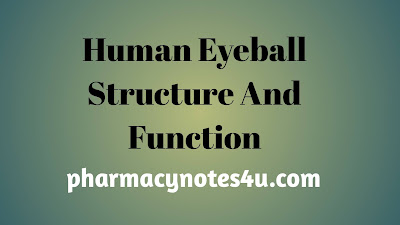 structure of eyeball diagram, internal structure of eyeball, internal structure of eye, physiology of Vision