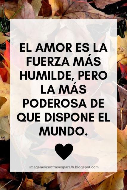 El amor es la fuerza más humilde, pero la más poderosa de que dispone el mundo.