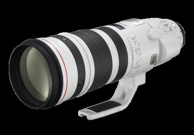 【攝影器材】務實首選,Canon 用戶都值得擁有的 10 顆 EF 鏡 - Canon EF 200-400mm f/4L IS USM Extender 1.4x