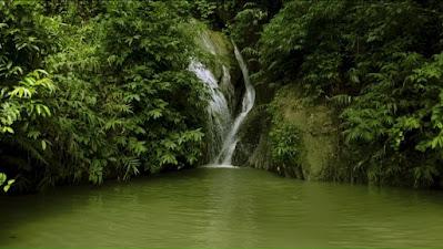 হরিণমারা-হাটুভাঙ্গা-সর্পপ্রপাত ট্রেইল( হরিণমারা ঝর্ণা,হাটুভাঙা ঝর্ণা,নীলাম্বরি লেক) - ভ্রমণ গাইড । Horinmara waterfall | Horinmara trail | Bawachora trail | Hatubhanga trail | Sohosrodhara trail | Mirsharai | Bangladesh
