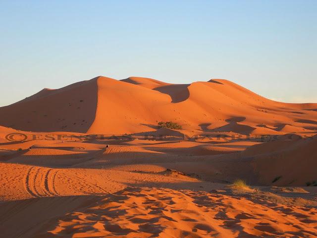 Resultado de imagen de Desierto de arena o hamada de Merzouga