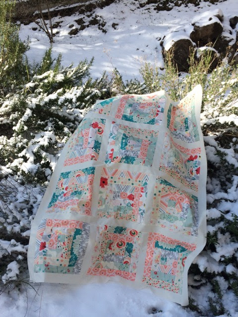 Baby Quilt Top in the Snow
