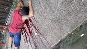 Homem morre de coronavírus com cinco tiros na cabeça