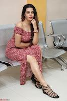 Diksha Panth in a Deep neck Short dress at Maya Mall pre release function ~ Celebrities Exclusive Galleries 020.JPG