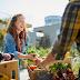 11 Ide Bisnis Pertanian Organik