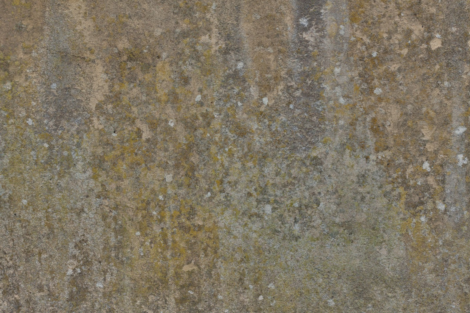 Nice dirty grungy wall texture with moss
