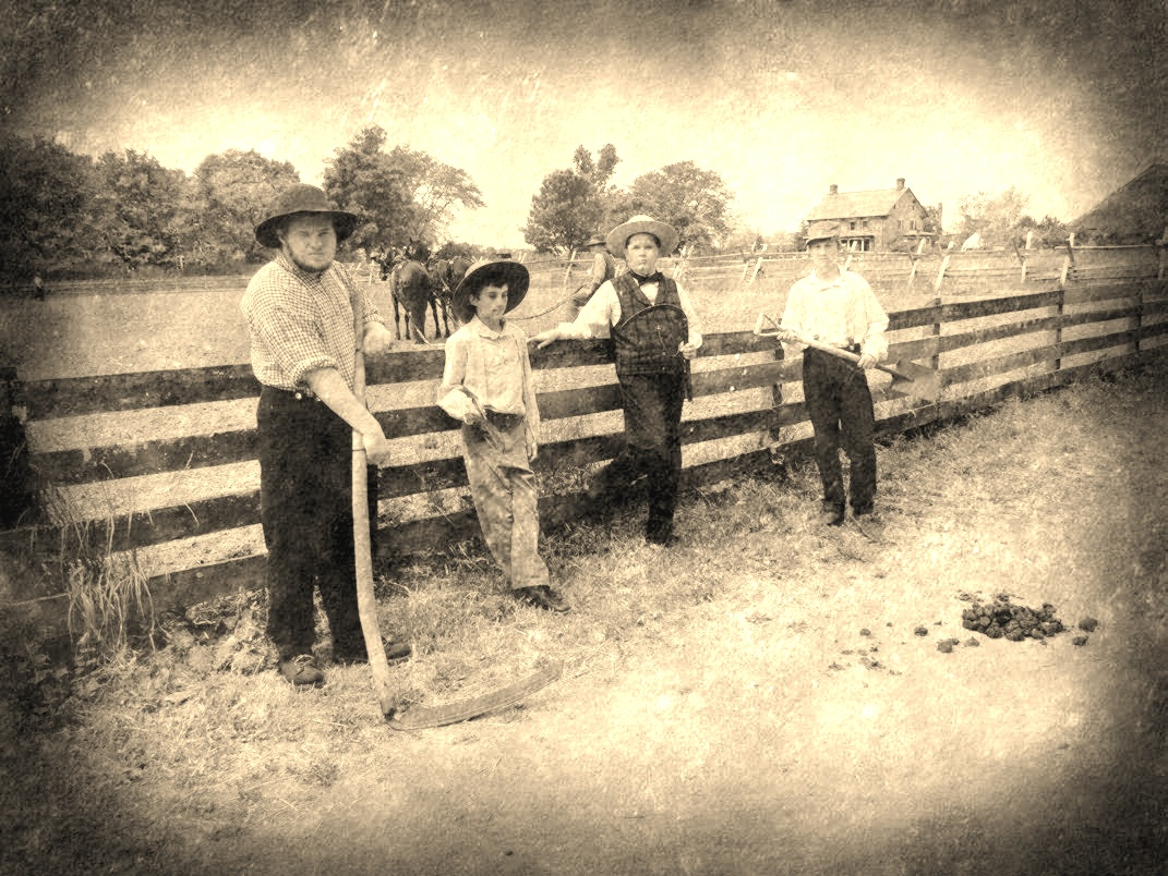 Passion for the Past: The Summer of our Ancestors: From Farm