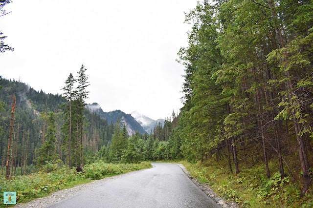 Camino al Morskie Oko en Tatras