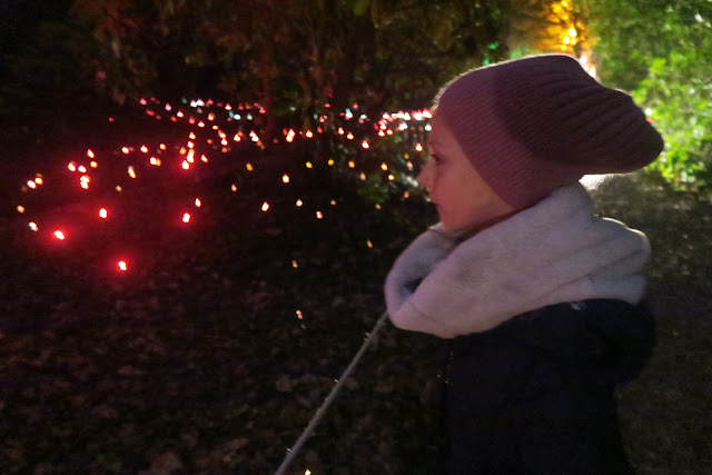 Fibre Optics Mill Pond Walk Christmas at Beaulieu