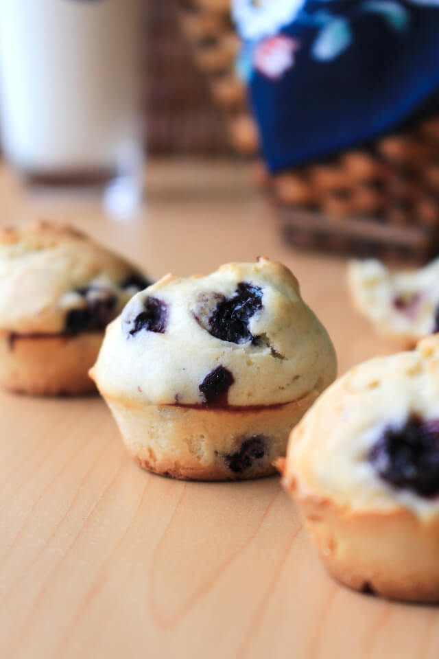 Two Bite Blueberry Muffins are simple and delicious basic mini muffins filled with sweet blueberries. They make a great breakfast, lunchbox addition or snack! #feastndevour
