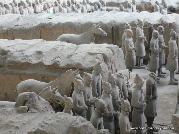 Terracotta Warriors plus horses in Xi'an, China