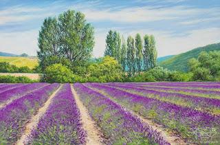 campos-flores-coloridas-pinceladas