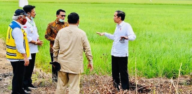 Saiful Anam: Jokowi Tunjuk Prabowo Jadi Leading Sector Food Estate Itu Pelecehan Bagi Mentan
