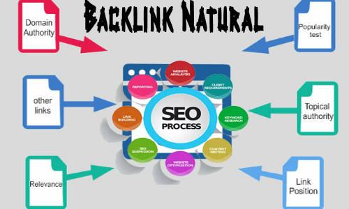 8 Cara Membangun Backlink Natural dan Berkualitas Tinggi
