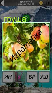 на дереве растут спелые груши 4 уровень 600 забавных картинок