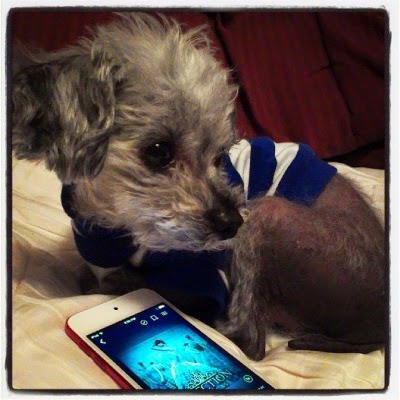 Murchie lays on a white comforter with his head twisted across his body, his attention fixed on something outside the frame. In front of him sits a red-rimmed iPod with The Selection's cover on its screen. The cover depicts a white girl wearing a blue ball gown. She stands before a set of mirrors that reflect her dozens of times.