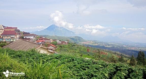 keindahan Lereng Gunung Merbabu