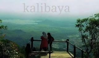 Keindahan Wisata Kalibaya Di Brebes