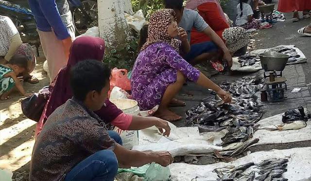 Fenomena ikan mabuk di Ranu Klakah