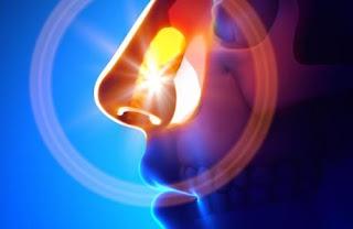 نورينوز بخاخ مهدئ لحساسية والتهاب الأنف Norhinose