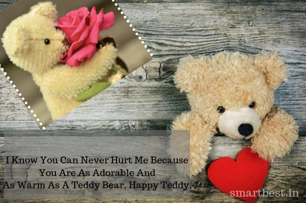 Happy Teddy Day Images | Teddy Day Quotes | Teddy Day Whatsapp Status Video