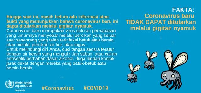Faktanya coronavirus baru TIDAK DAPAT ditularkan melalui gigitan nyamuk