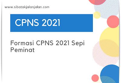formasi cpns 2021 dengan peluang besar untuk lulus karena sepi peminat