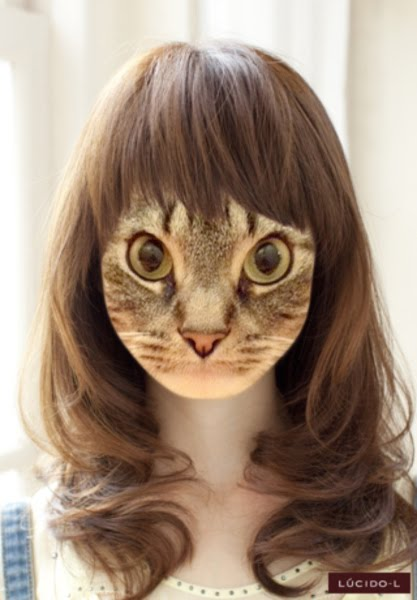 cat hair styles noa amp ash we are kittens forever new hairstyles 1648