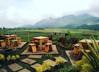 Visiting Sawahan Cafe Pujon Batu Malang East Java